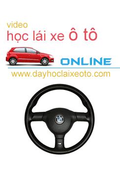hoc lai xe online